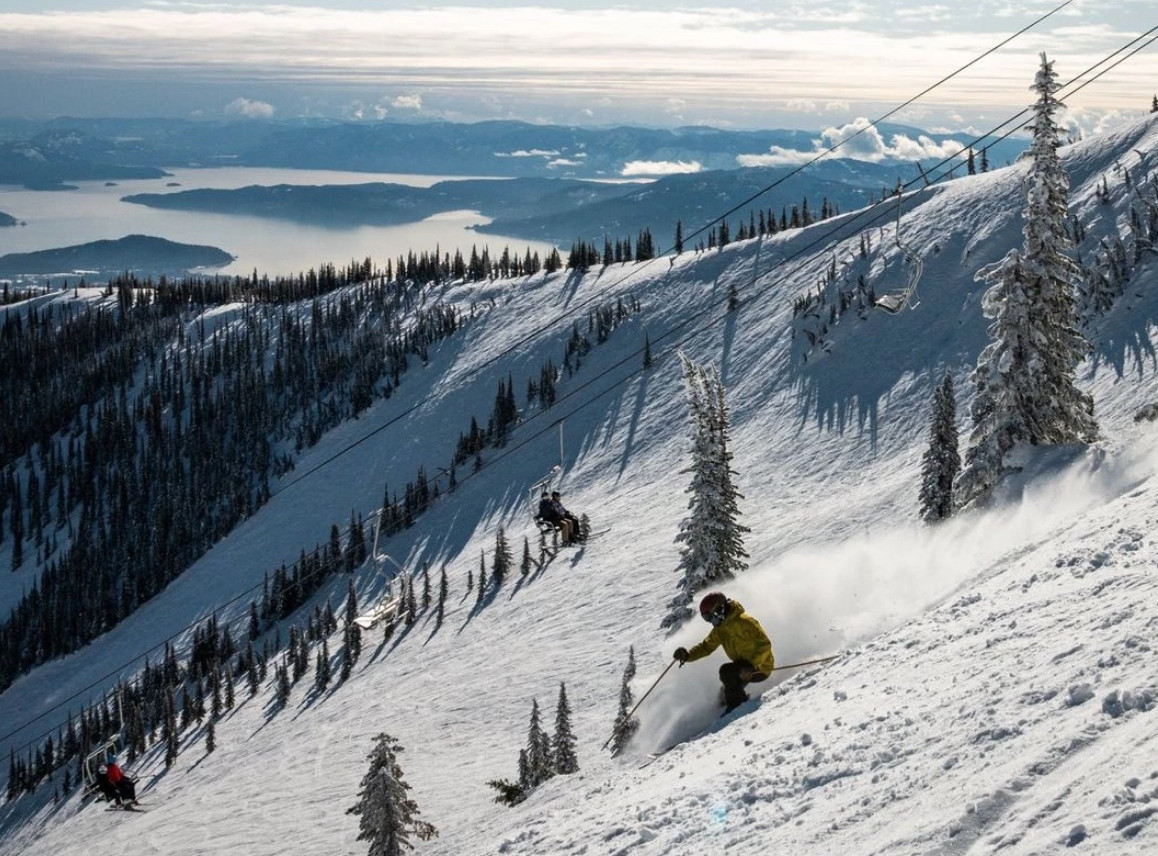 Schweitzer's Surprise Opening for Passholders