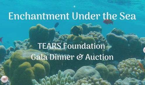 14th Annual Tears Foundation Gala Dinner & Auction - POSTPONED