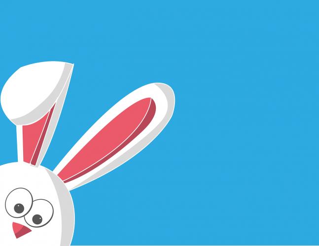 Bunny Express