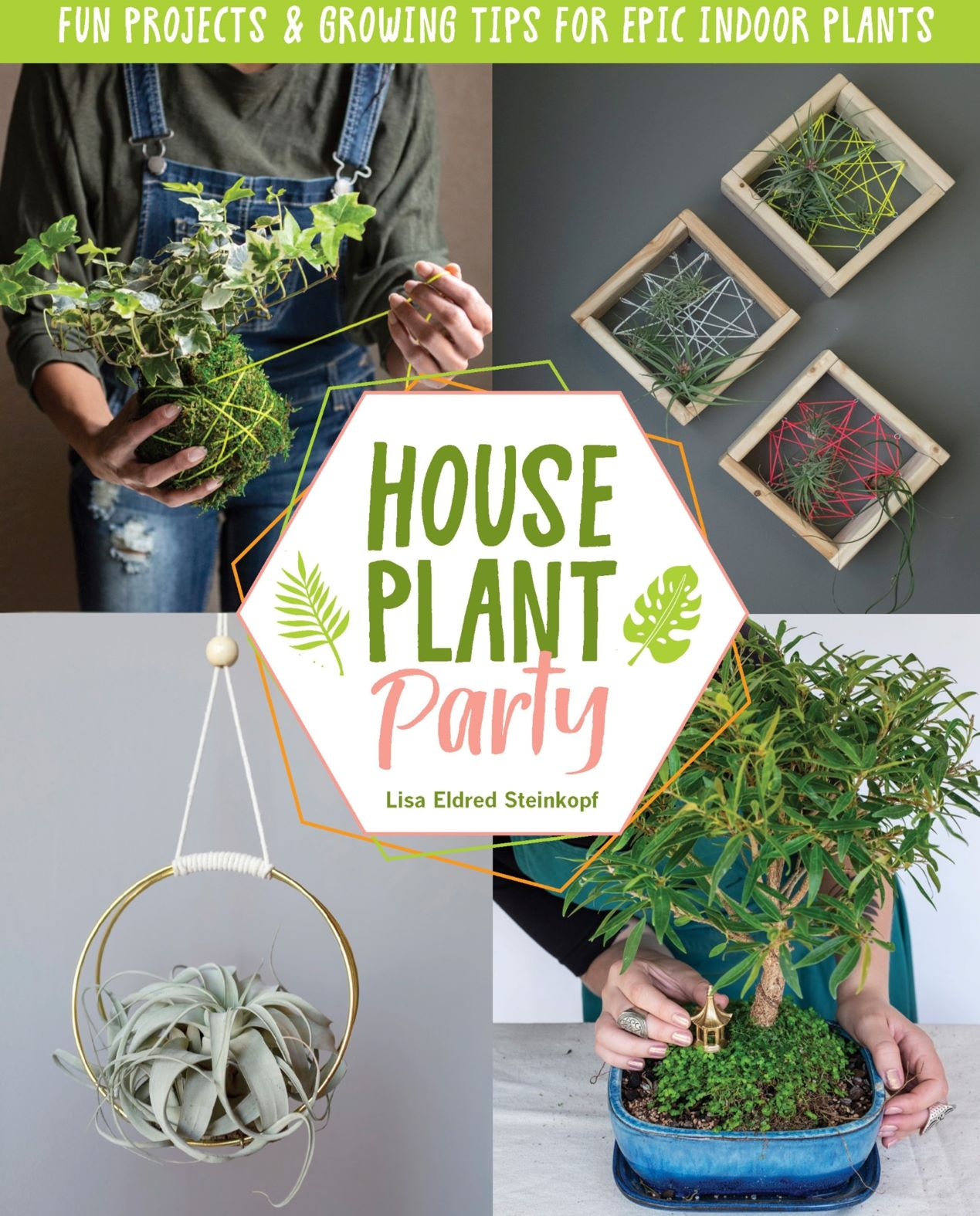 House Plant Party, Author Lisa Eldred Stenkopf Virtual Lecture