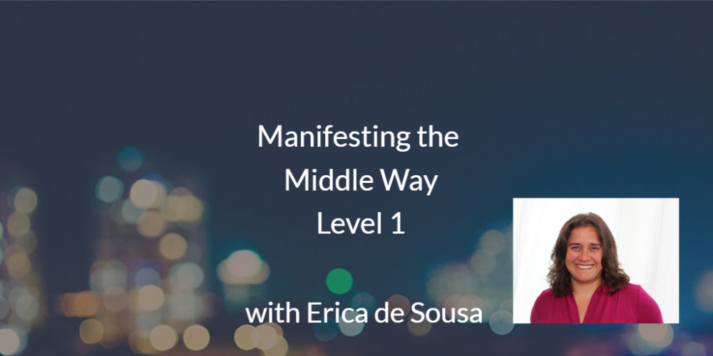 Level 1 MMW Webinar Series with Erica de Sousa
