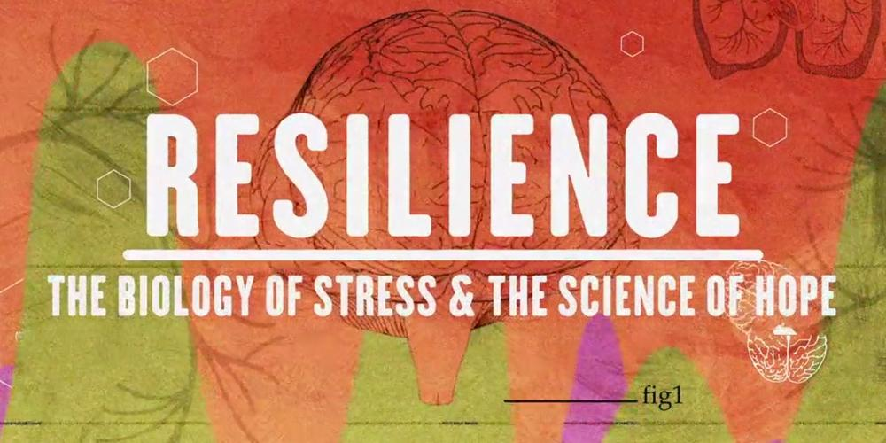 Resilience: Film screening and community conversation @ Palmyra Middle School