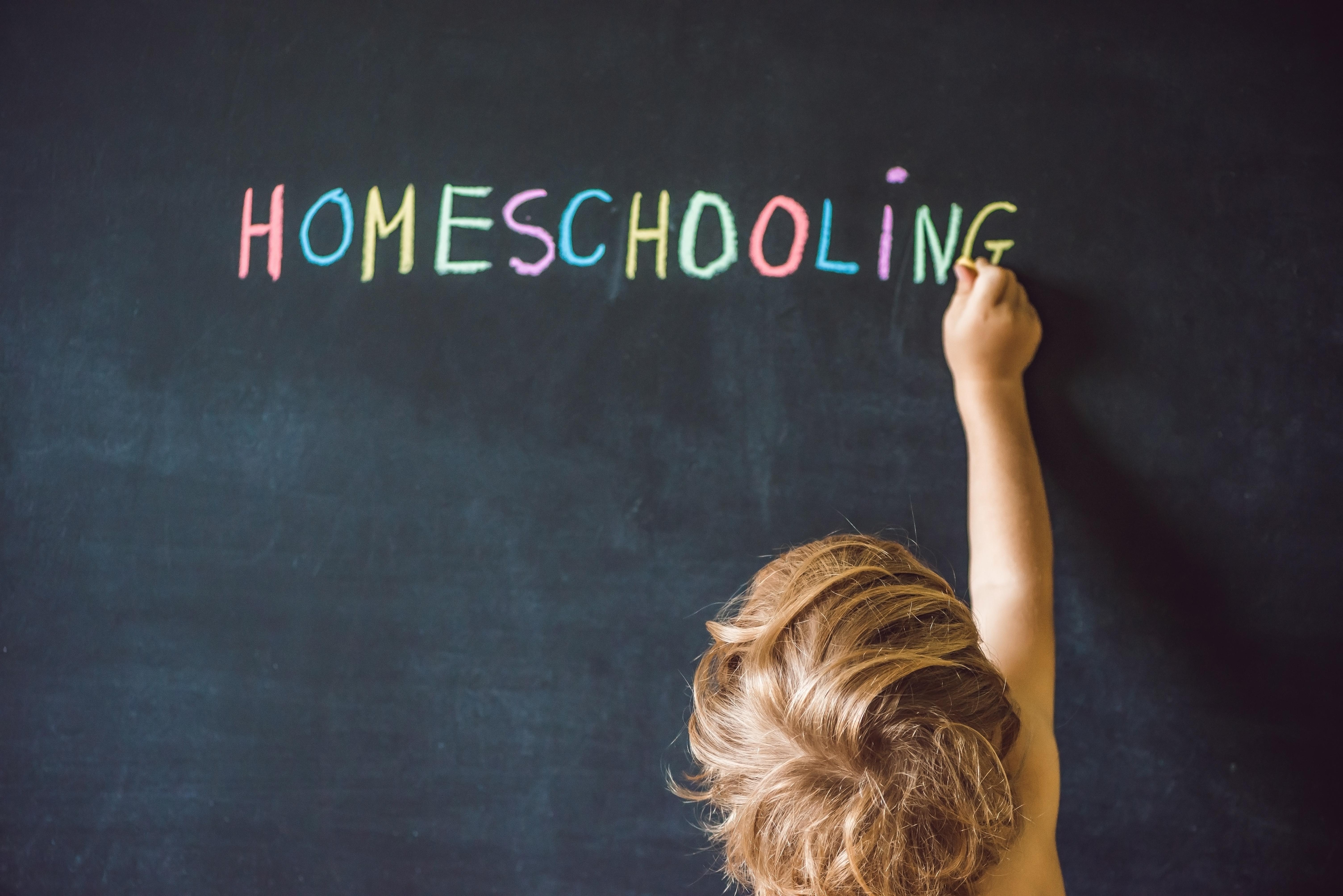 Homeschool Days - Ohio's Ancient People