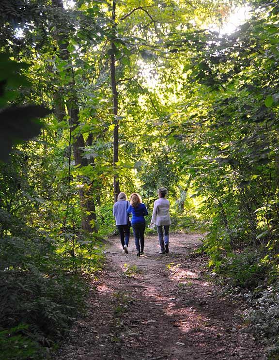 A-to-Z Whitman Woods Walk & Talk