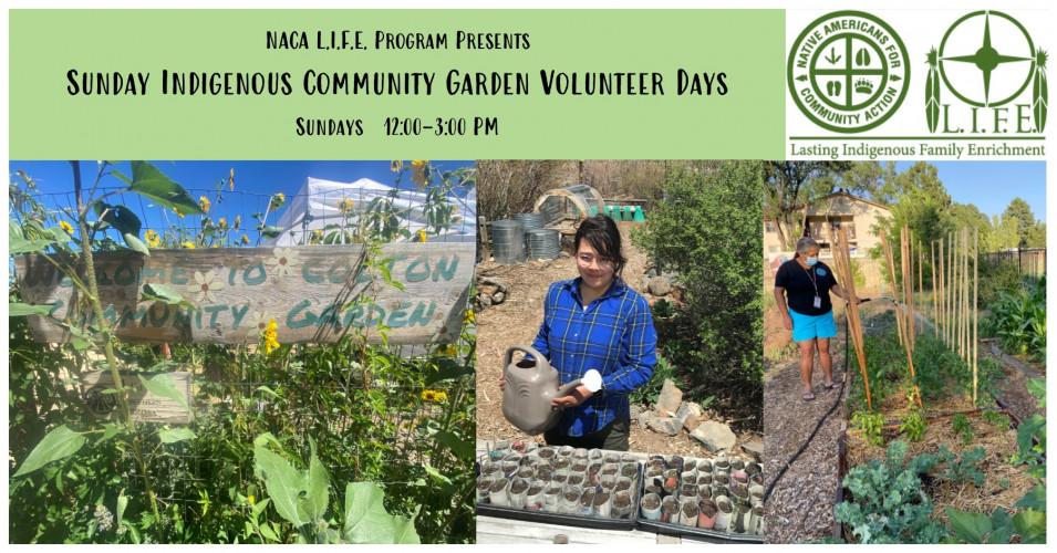 Indigenous Community Gardening Volunteer Days