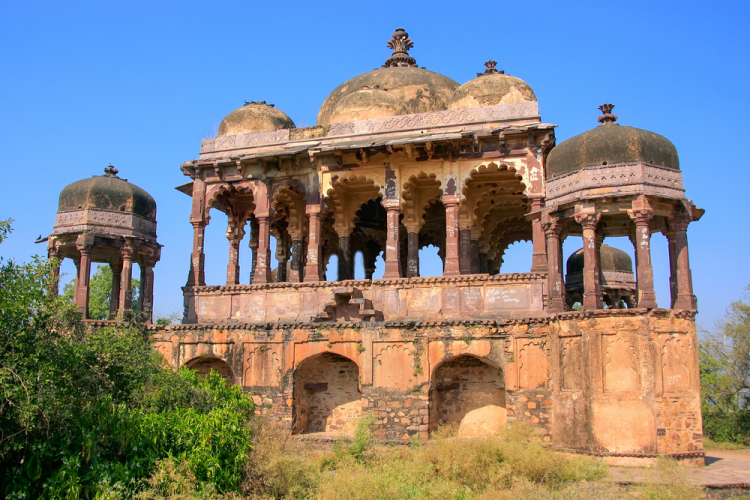 Wildlife, Forts & Palaces Of Rajasthan (07 Days: #768)