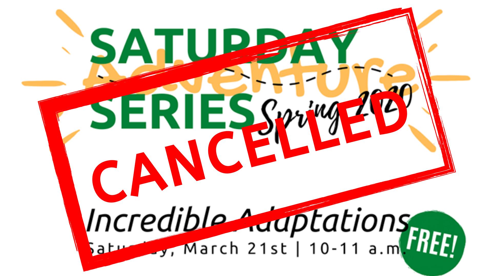 Saturday Adventure Series: Incredible Adaptations