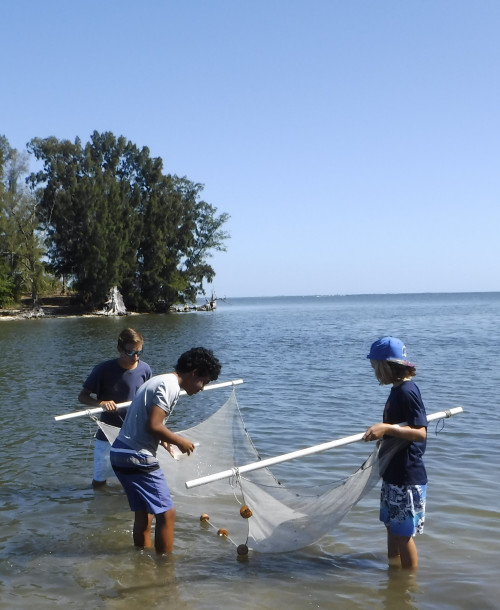 Environmental Learning Center Summer Camps