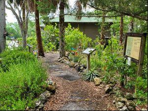 ELC Walking Meditation in the Butterfly Garden