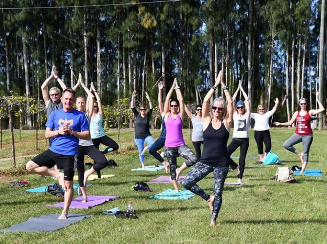 Yoga in the Vines. EVERY Saturday Morning!