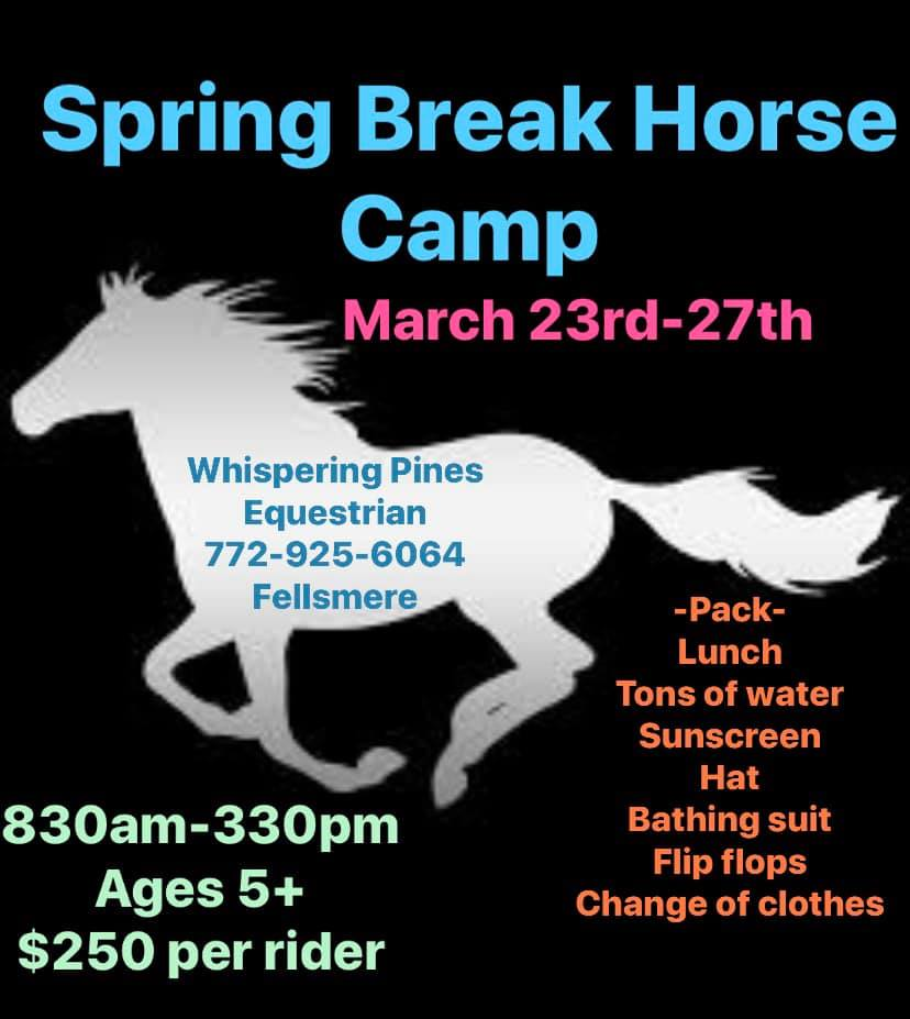 Spring Break Horse Camp
