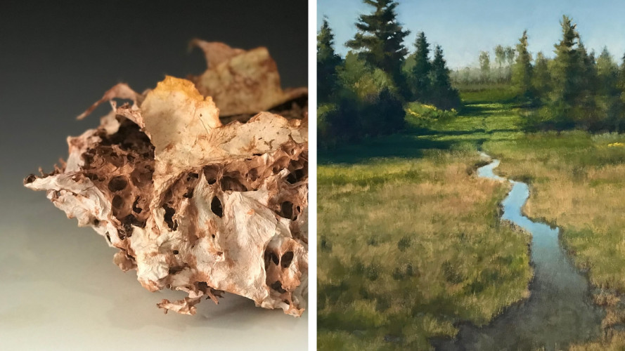 Vessels & Views: Natural Reality