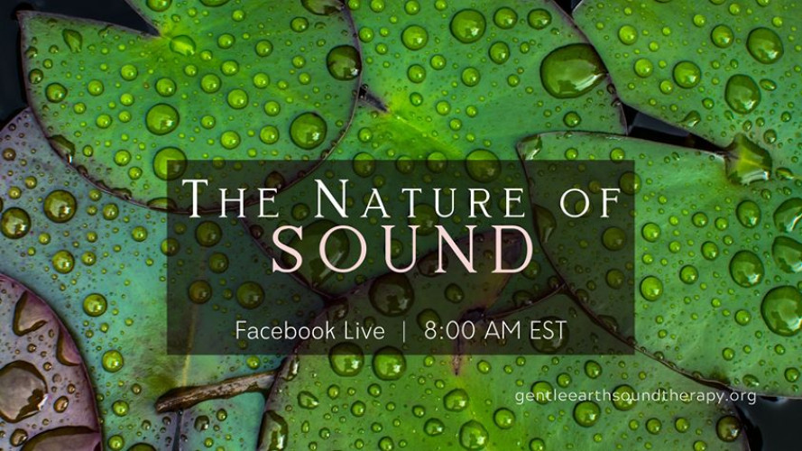 Facebook Live - The Nature of Sound