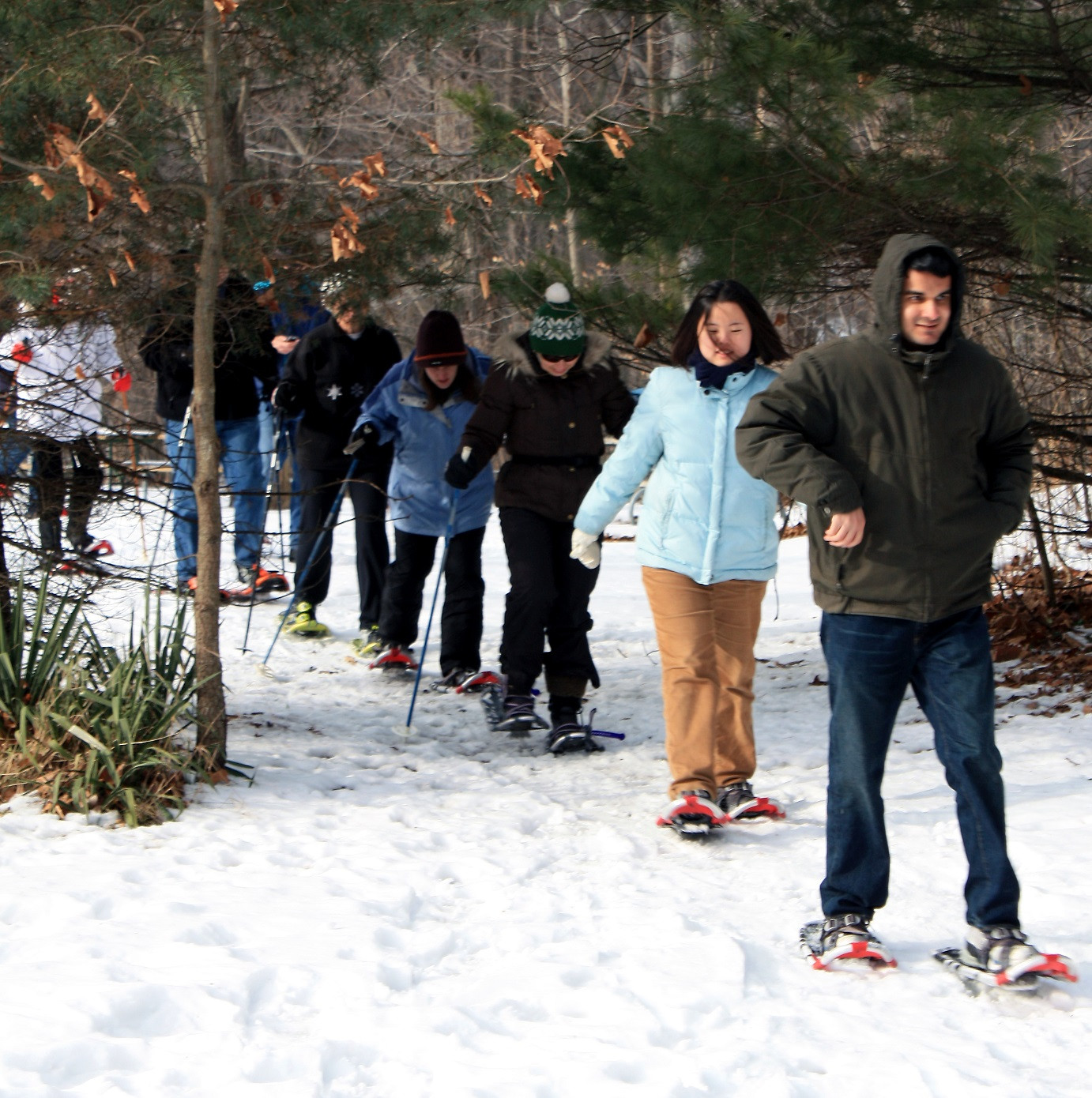 Guided Evening Snowshoe Walk