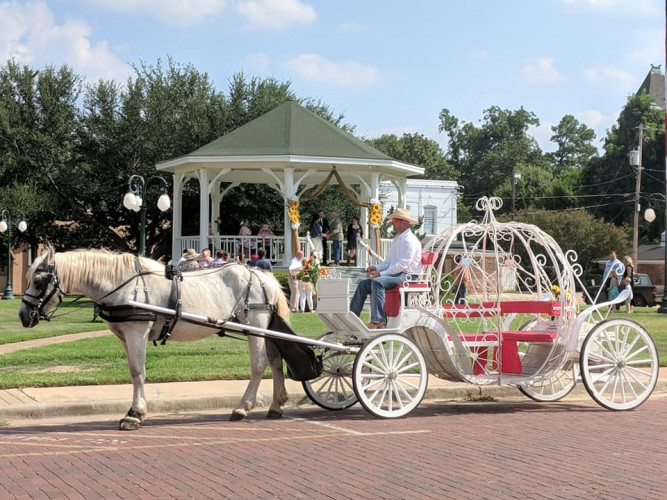 Lone Star Carriage Company Of Jefferson Texas
