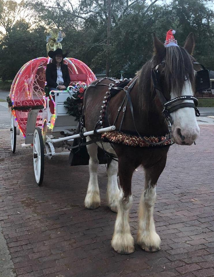 Christmas Carriage Rides