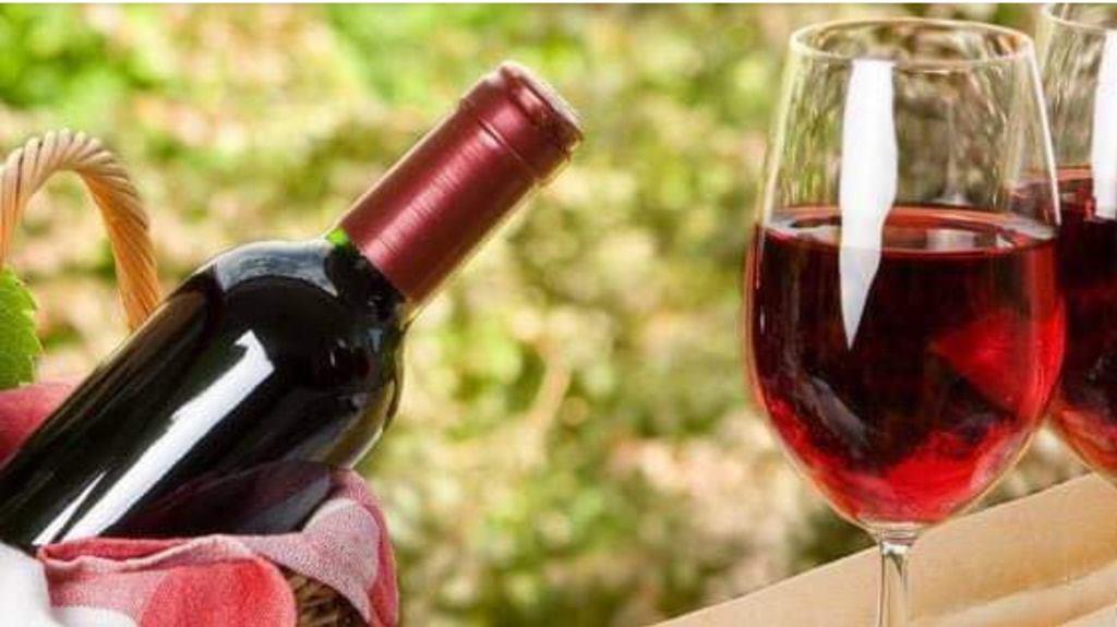 Wine Tasting & Appetizer Social