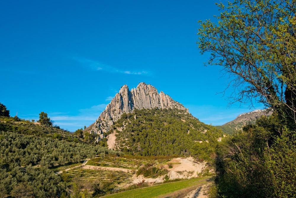 SORTIE - Escalade dans les Baronnies en Drôme Provençale - France