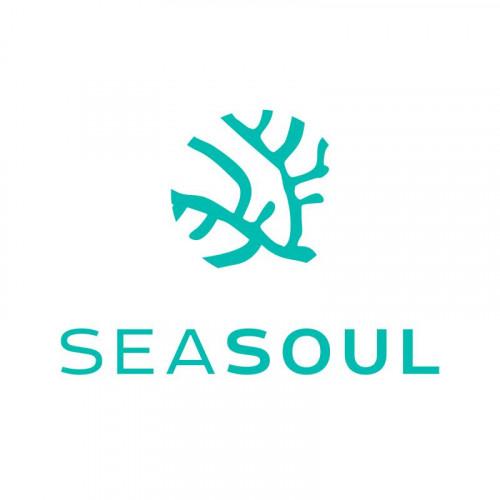 Seasoul-Beach-Club-logo_h2wn.jpg