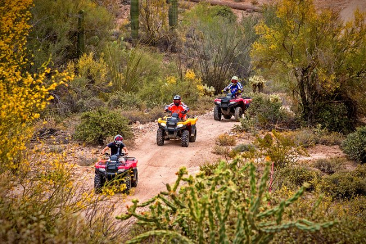 Arizona Desert Guided Tour by ATV