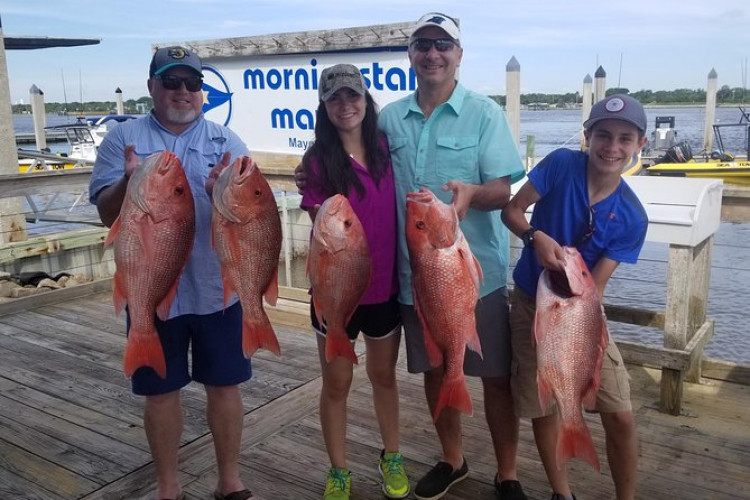 Deep Sea Private Group Fishing Charter for up to 6 People