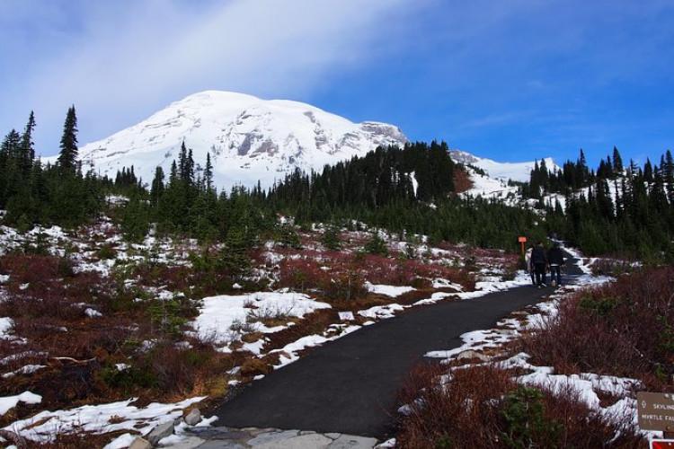 Mt. Rainier Day Trip from Seattle