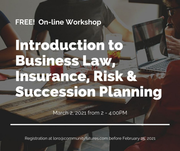FREE! On-Line Workshop - Intro. to Business Law, Insurance, Risk, & Succession Planning