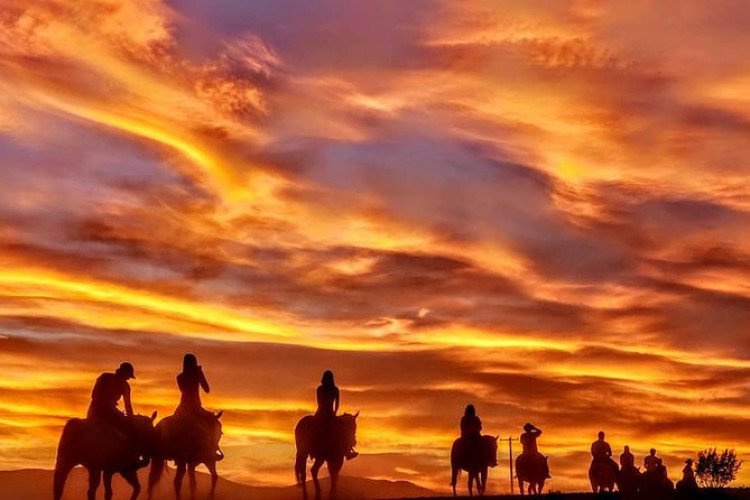 Wild West Sunset Horseback Ride   Conclude the evening ride with a barbecue dinner followed by a cowboy campfire under the stars.