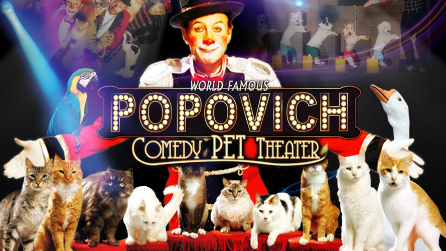 Gregory Popovich's Comedy Pet Theater | 46% Off Tickets