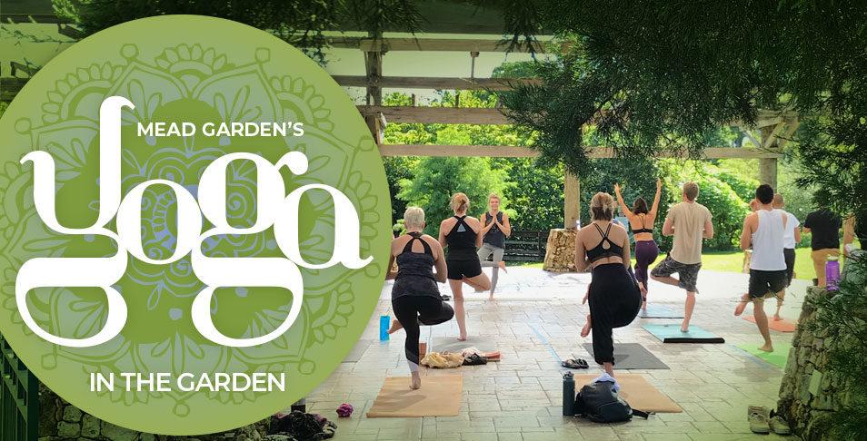Saturday Yoga in the Garden
