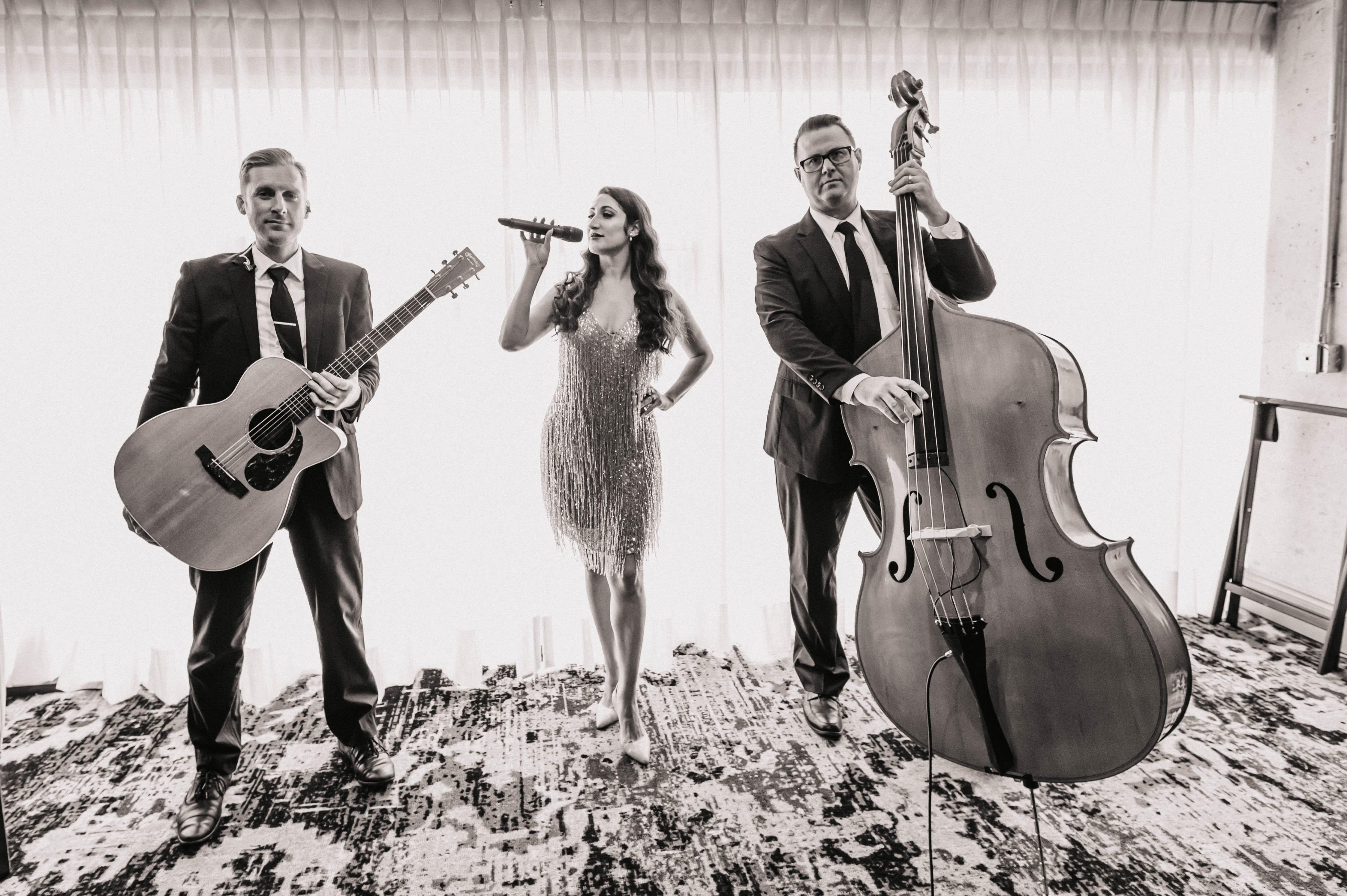 Nik & Reema Trio.jpg