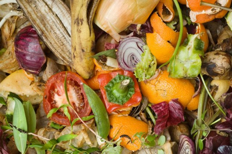 Introduction to Composting - Online Class