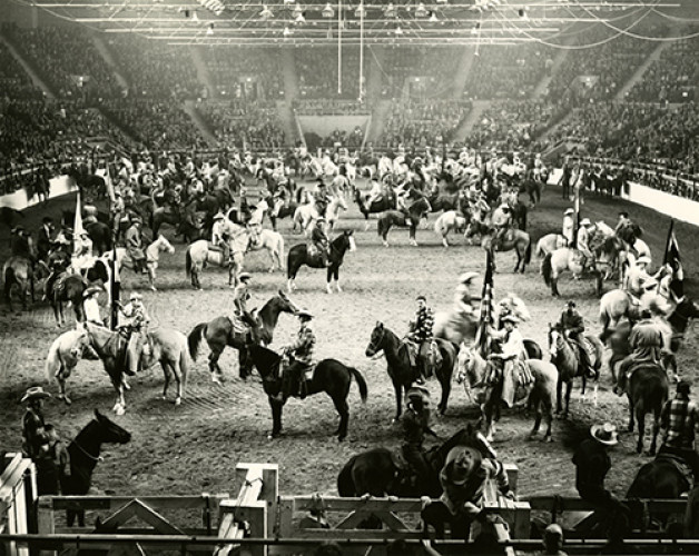 Join Up! Horse Histories at the National Western Stock Show