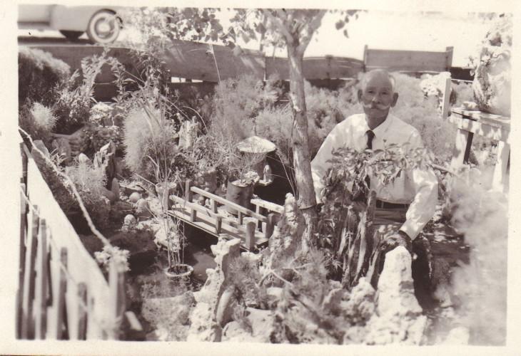 Mataji Umeda's garden at Amache
