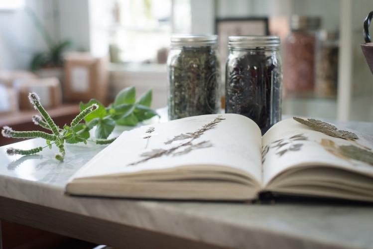 Urban Herbalism.jpg