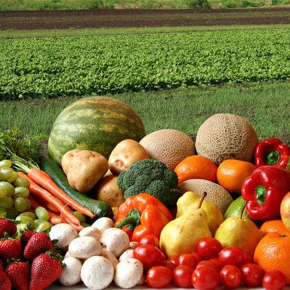 agriculture-1_0D3P.jpg