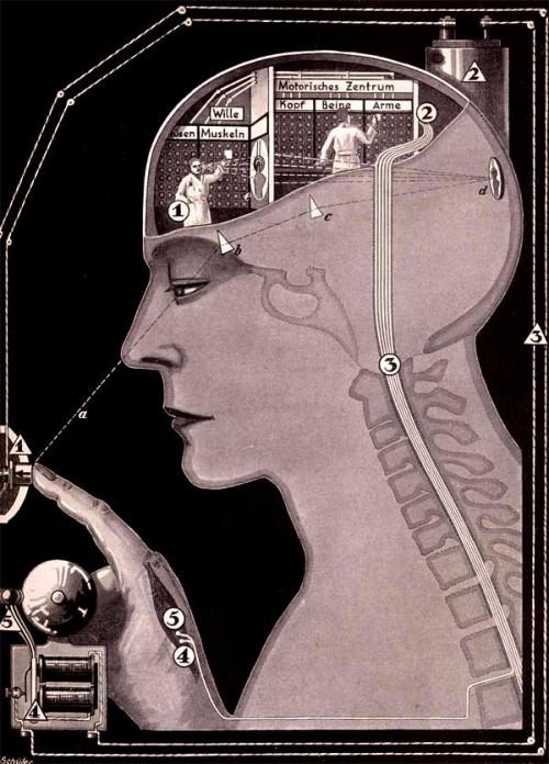 """Curso teórico de ilustração II - """"Se non è vero è ben trovato"""" - prodígios e fantasias em torno da Ciência"""